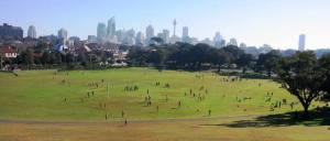 Moore Park Oval, view from Mount Steele